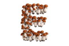 Boletus mushroom letter E on white background - stock illustration