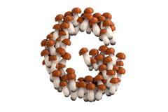 Boletus mushroom letter G on white background - stock illustration