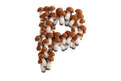 Boletus mushroom letter P on white background - stock illustration