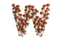 Boletus mushroom letter W on white background - stock illustration