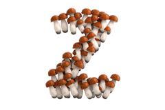 Boletus mushroom letter Z on white background Stock Illustration