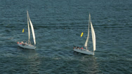 Stock Video Footage of yachts, sailboats sailing in sydney harbour, australia