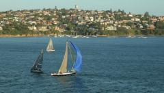 yachts, sail boats sailing in sydney harbour, australia - stock footage