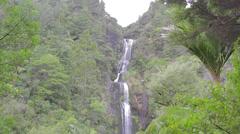 The hidden cascade falls waitakere range Stock Footage