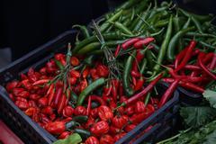 Hot Pepper / Pepperoni  Stock Photos