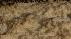 Dirty foam on  river bank Stock Footage