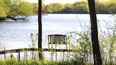 Green Lake Peaceful Park Area Stock Footage