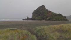 Pan on Piha beach Stock Footage