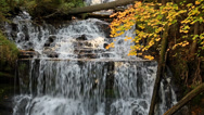 Stock Video Footage of Autumn at Wagner Falls Loop