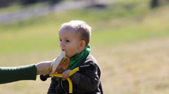 Mother hand feed adorable baby in the park, baby feed teddy bear, learn to share Stock Footage