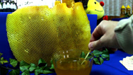 Stock Video Footage of honey products