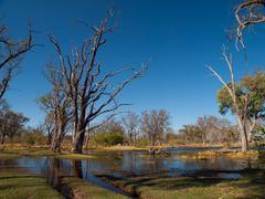 Ford in paradise pools area in okavango delta Stock Photos