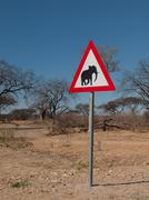 Beware of elephants Stock Photos