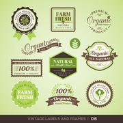 vintage fresh organic product labels and frames - stock illustration
