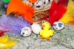 easter egg and chick. - stock photo