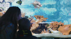 Family trip to the oceanarium Stock Footage