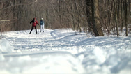 Stock Video Footage of cross country skiing 01