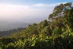 landscape of mountain view at phuthapboek khoo kho , phetchabun thailand - stock photo