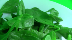Rotating spinach on white plate green screen Stock Footage