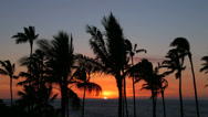 Stock Video Footage of Sunset over the Pacific Ocean with palm trees, Big Island, Hawaii