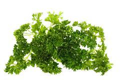 parsley, isolated - stock photo