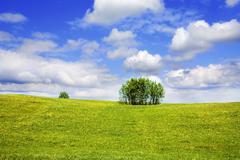 Stock Photo of summer landscape