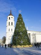 City christmas tree, vilnius, lithuania Stock Photos