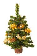 Christmas tree, isolated Stock Photos