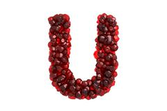 Stock Illustration of Pomegranate letter U on white background