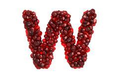 Pomegranate letter W on white background - stock illustration