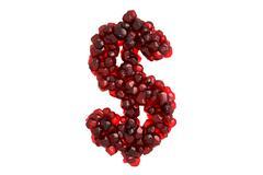 Pomegranate symbol $ on white background - stock illustration