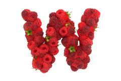 Raspberry letter W on white background - stock illustration