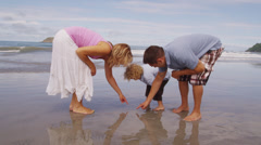 Parents and young son looking for shells at beach Stock Footage