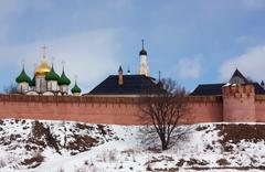 Stock Photo of Saviour-Euthimiev monastery