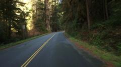 Prairie Creek Redwoods State Park Driving POV Stock Footage