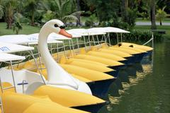 Pedal boat in form of a swan Stock Photos