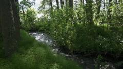 Shady Babbling Brook Forest Dappled Sunlight Pan to River - stock footage