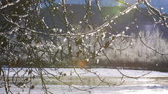 Slow Pan from Icy Frosted Branches to Winter Scenic over Chilkat Riv Stock Footage