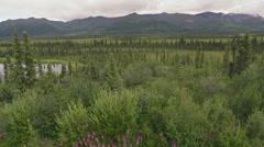 Stock Video Footage of Sub Arctic Alaskan Wilderness Mountain Lake Trail and Forest Scenic