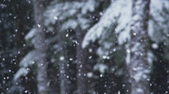 Swirling Super Slow Motion Heavy Snowfall Snowflakes Forest Boughs B Stock Footage
