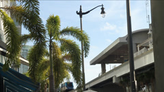 Electric Train passing by station with Palm trees in fore ground  in Miami Stock Footage