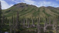 Yukon Marsh Tundra Wetland Tilt Up to Mountain Scenic Stock Footage