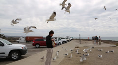 Man eating sandwich while seagulls swarm around him Stock Footage