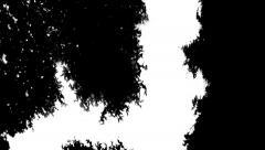 Paper absorbs ink paint. Macro. Stock Footage