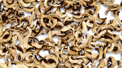 Stock Video Footage of Dried champignons