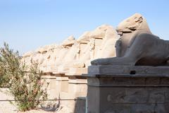 Stock Photo of Ram-headed sphinxes at Karnak temple