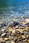 Pebbles under water Stock Photos