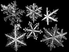Close up of snowflakes Stock Photos