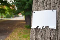 Announcement on tree - stock photo