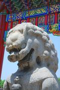 bronze lion in forbidden city garden - stock photo